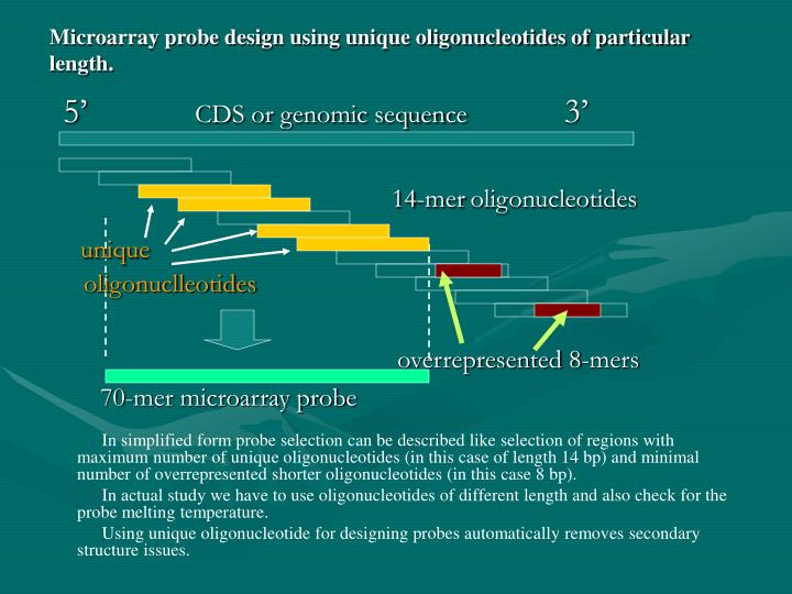 Microarray probe design using unique oligonucleotides of particular length.