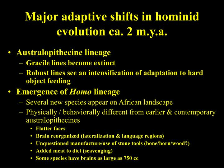 Major adaptive shifts in hominid evolution ca. 2 m.y.a.
