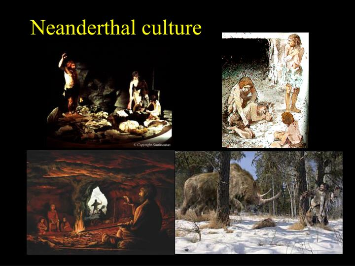 Neanderthal culture