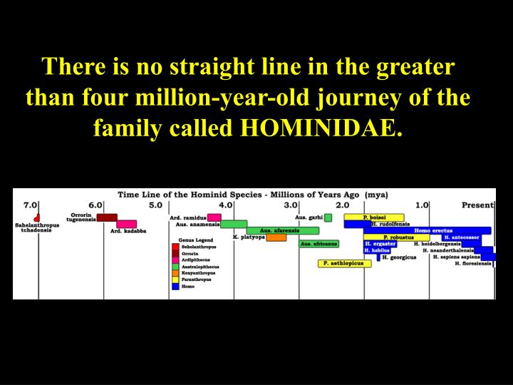 There is no straight line in the greater than four million-year-old journey of the family called HOM...