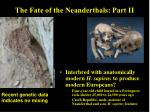 the fate of the neanderthals part ii
