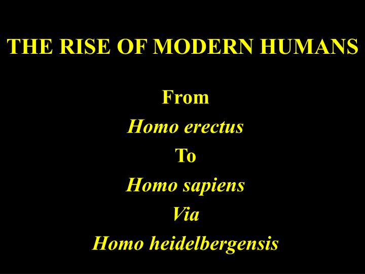 THE RISE OF MODERN HUMANS