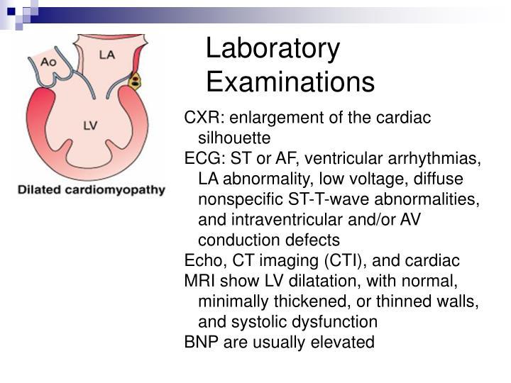 Laboratory Examinations