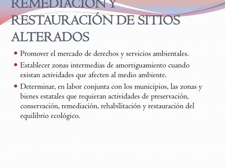 REMEDIACIÓN Y RESTAURACIÓN DE SITIOS ALTERADOS