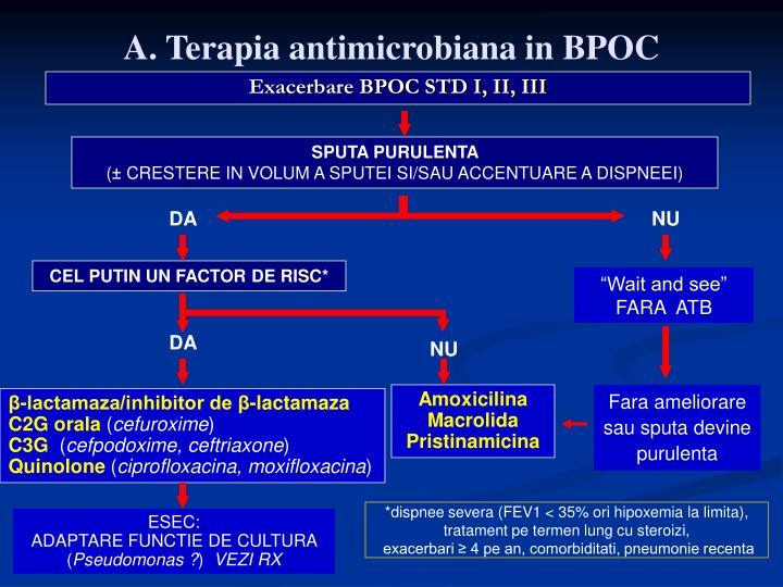 A. Terapia antimicrobiana in BPOC