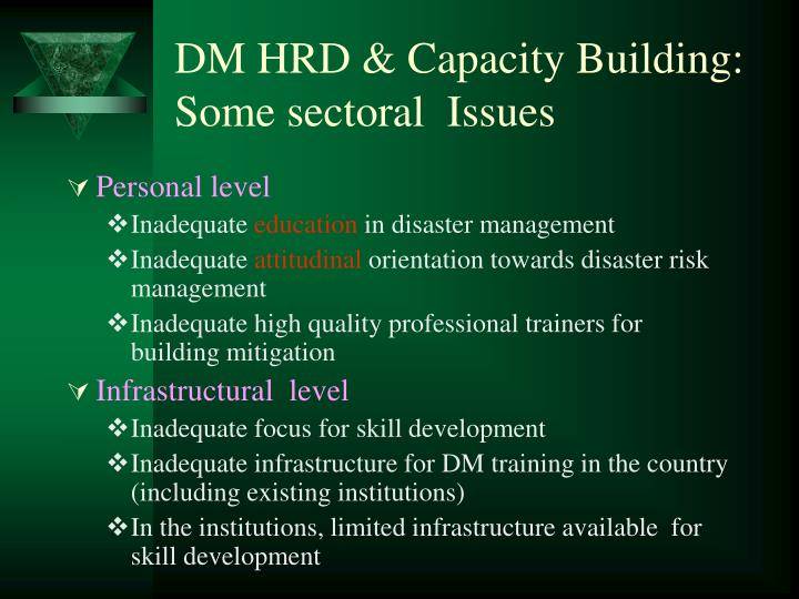 DM HRD & Capacity Building: Some sectoral  Issues