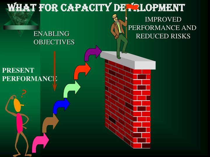 WHAT FOR CAPACITY DEVRLOPMENT
