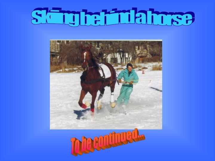 Skiing behind a horse