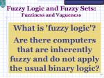 fuzzy logic and fuzzy sets fuzziness and vagueness