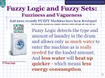 fuzzy logic and fuzzy sets fuzziness and vagueness1