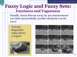 fuzzy logic and fuzzy sets fuzziness and vagueness10