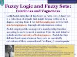fuzzy logic and fuzzy sets fuzziness and vagueness11