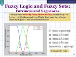 fuzzy logic and fuzzy sets fuzziness and vagueness7