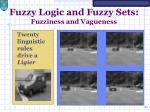 fuzzy logic and fuzzy sets fuzziness and vagueness9