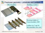preshower geometry m modules and ladders