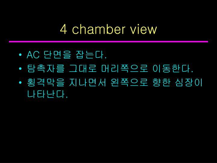 4 chamber view