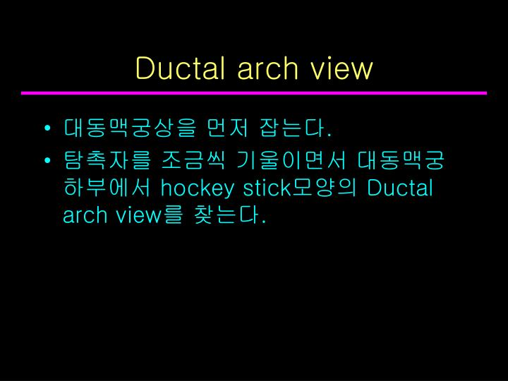 Ductal arch view