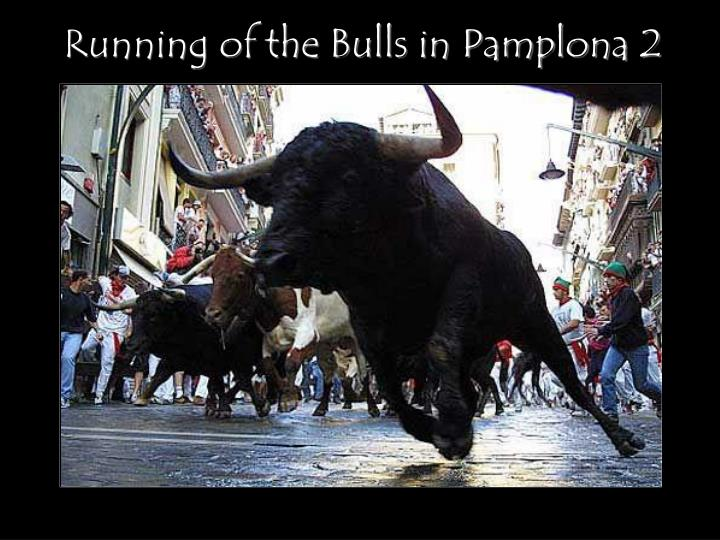 Running of the Bulls in Pamplona 2