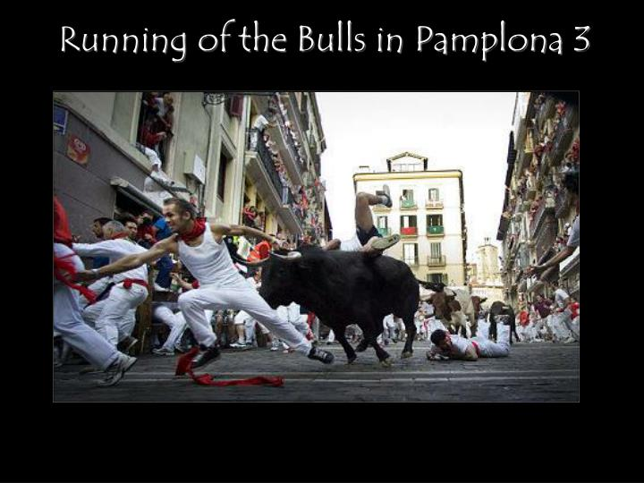 Running of the Bulls in Pamplona 3