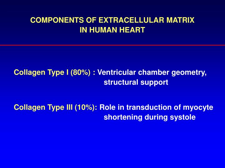 COMPONENTS OF EXTRACELLULAR MATRIX