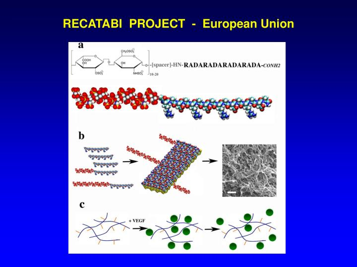 RECATABI  PROJECT  -  European Union
