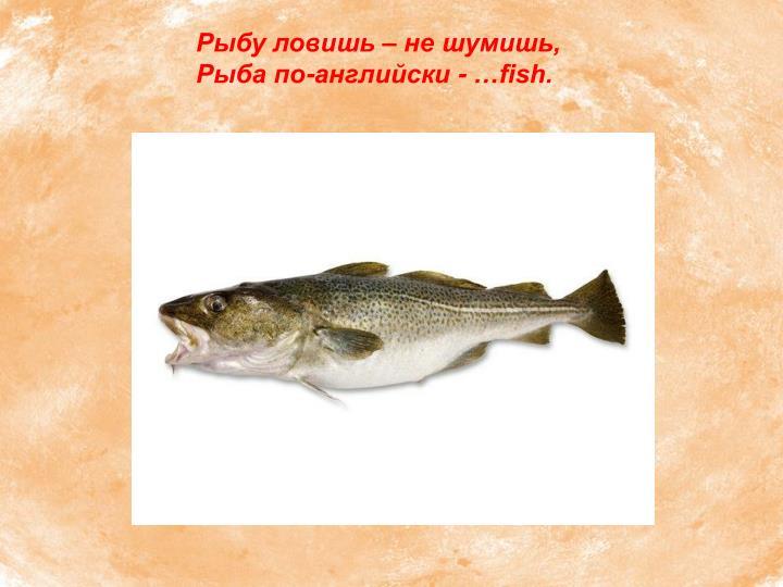 Рыбу ловишь – не шумишь,