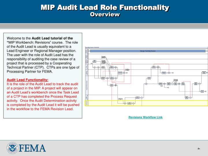 MIP Audit Lead Role Functionality