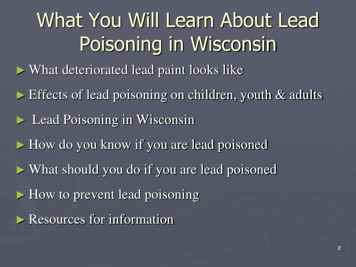 What you will learn about lead poisoning in wisconsin