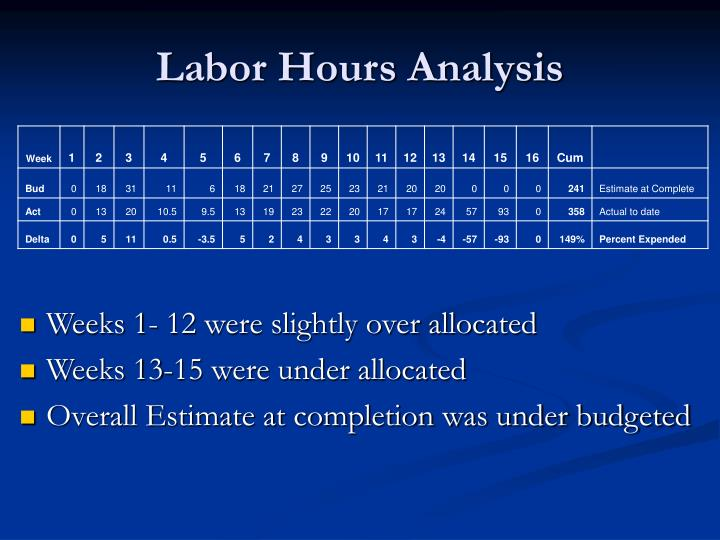 Labor Hours Analysis