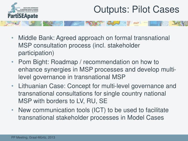 Outputs: Pilot Cases