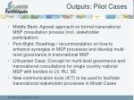 outputs pilot cases