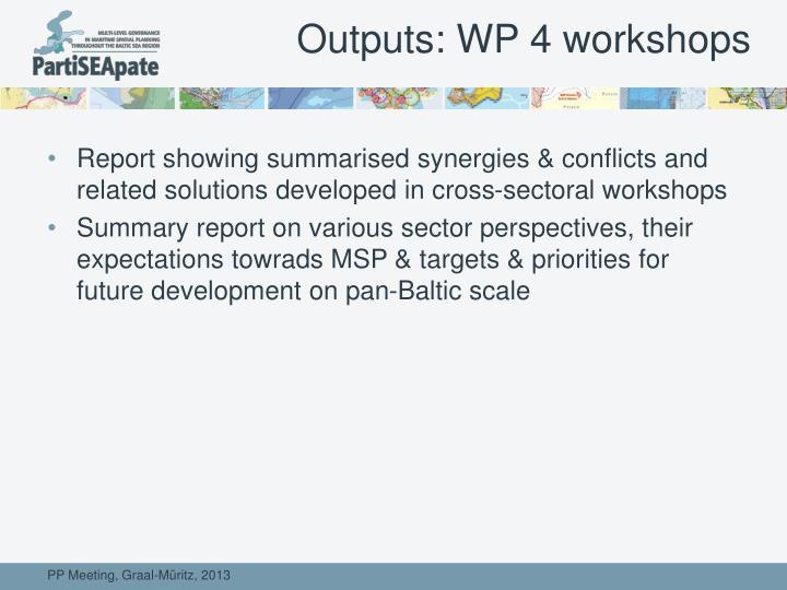 Outputs: WP 4 workshops