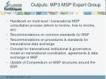 outputs wp3 msp expert group