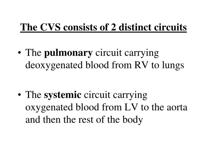The CVS consists of 2 distinct circuits