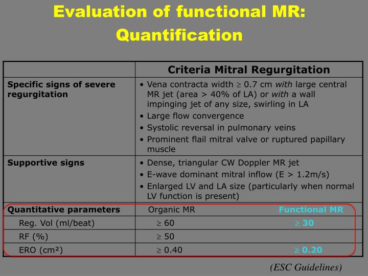Evaluation of functional MR: Quantification