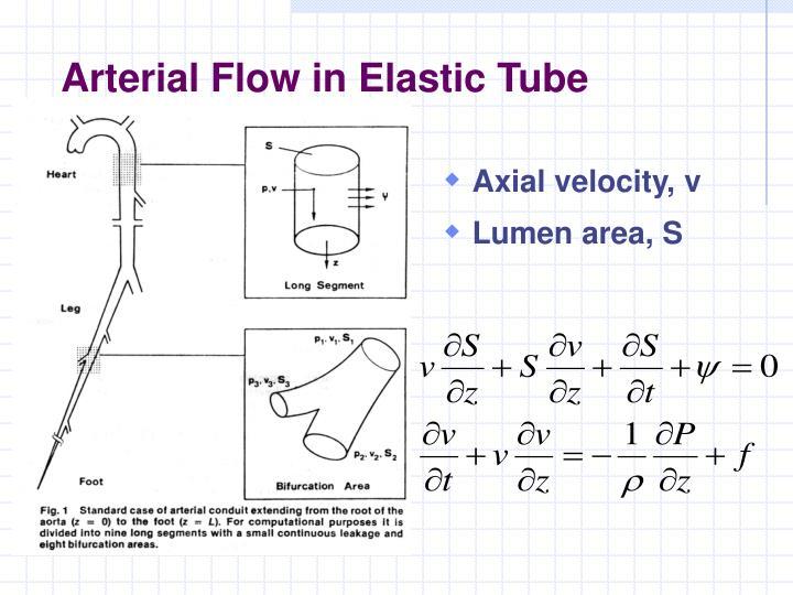 Arterial Flow in Elastic Tube