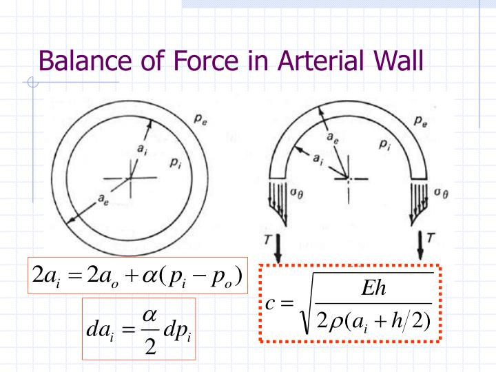 Balance of Force in Arterial Wall