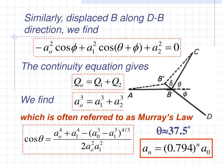 Similarly, displaced B along D-B direction, we find
