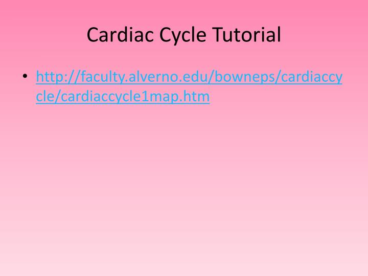Cardiac Cycle Tutorial