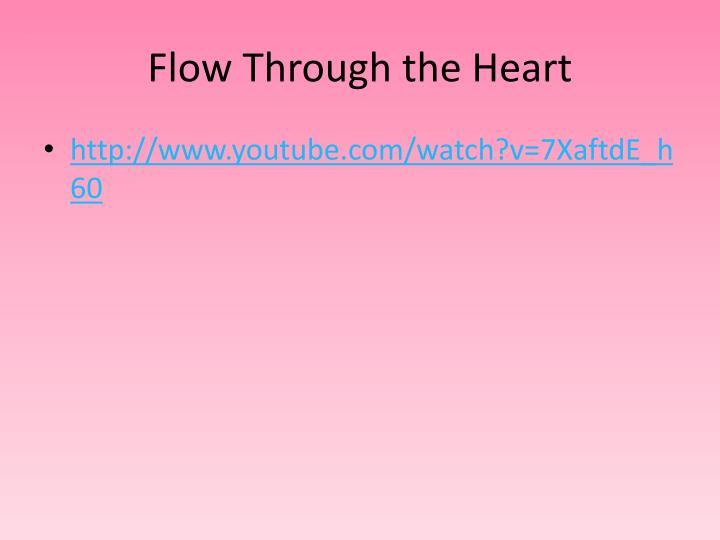 Flow Through the Heart