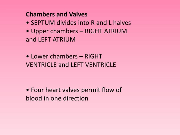 Chambers and Valves