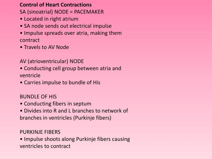 Control of Heart Contractions