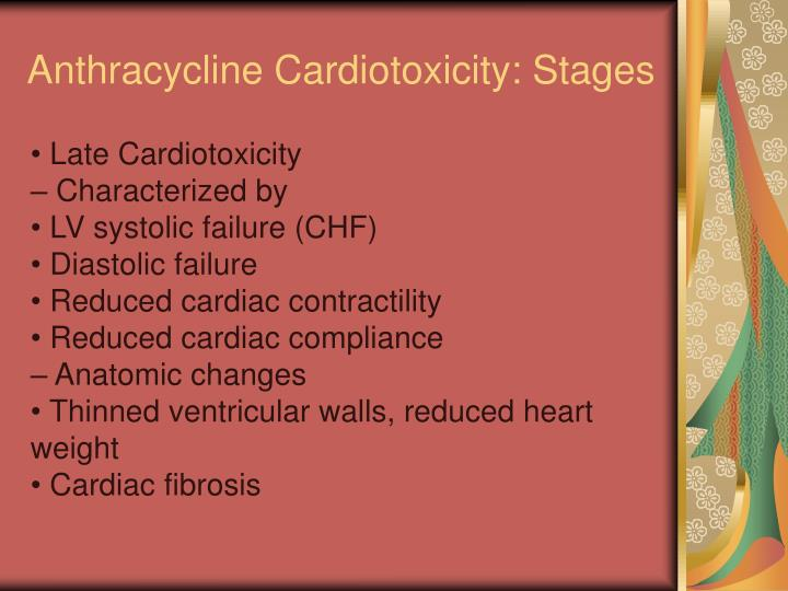 Anthracycline Cardiotoxicity: Stages