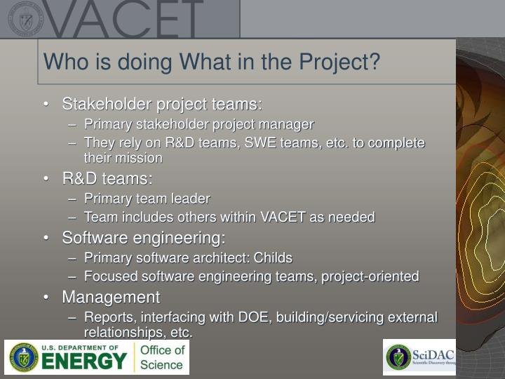 Who is doing What in the Project?
