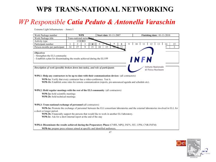 WP8  TRANS-NATIONAL NETWORKING