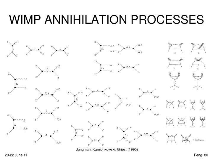 WIMP ANNIHILATION PROCESSES