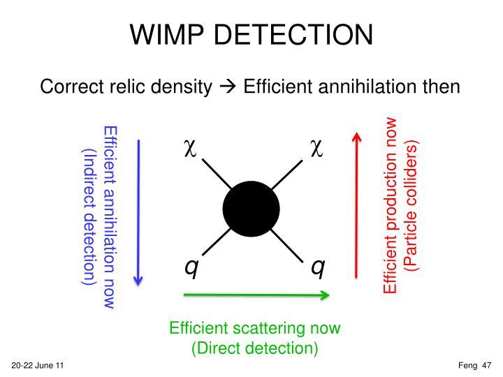 WIMP DETECTION