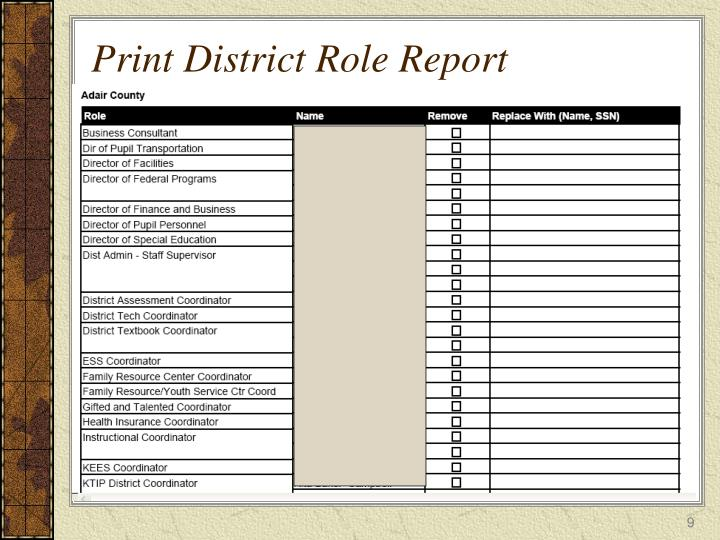 Print District Role Report