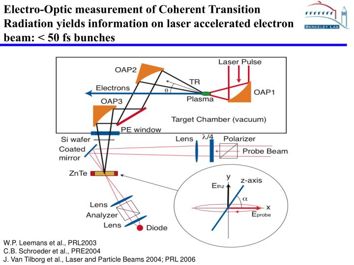 Electro-Optic measurement of Coherent Transition Radiation yields information on laser accelerated electron beam: < 50 fs bunches