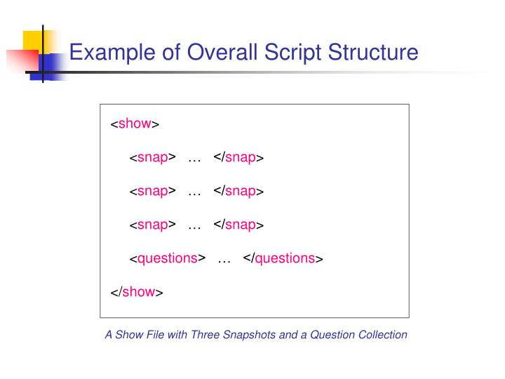 Example of Overall Script Structure